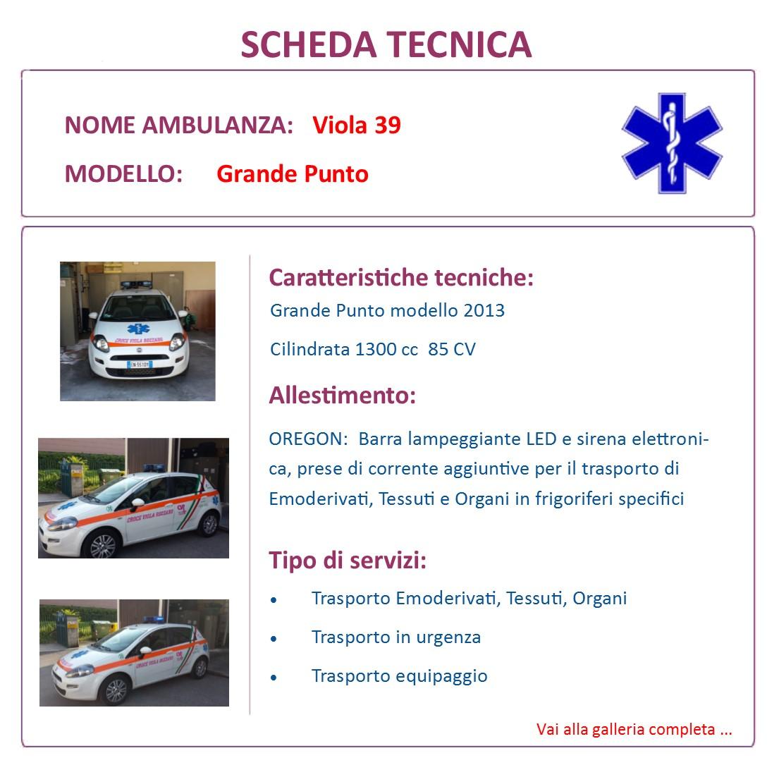 Scheda Tecnica V39