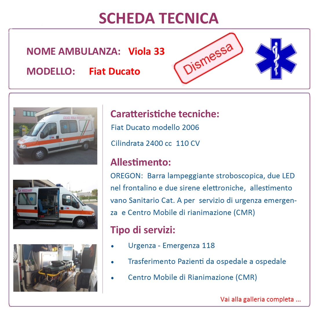 Scheda Tecnica V33